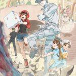 「はたらく細胞」感想と評価 2018年夏アニメトップクラスをいくアニメ!?